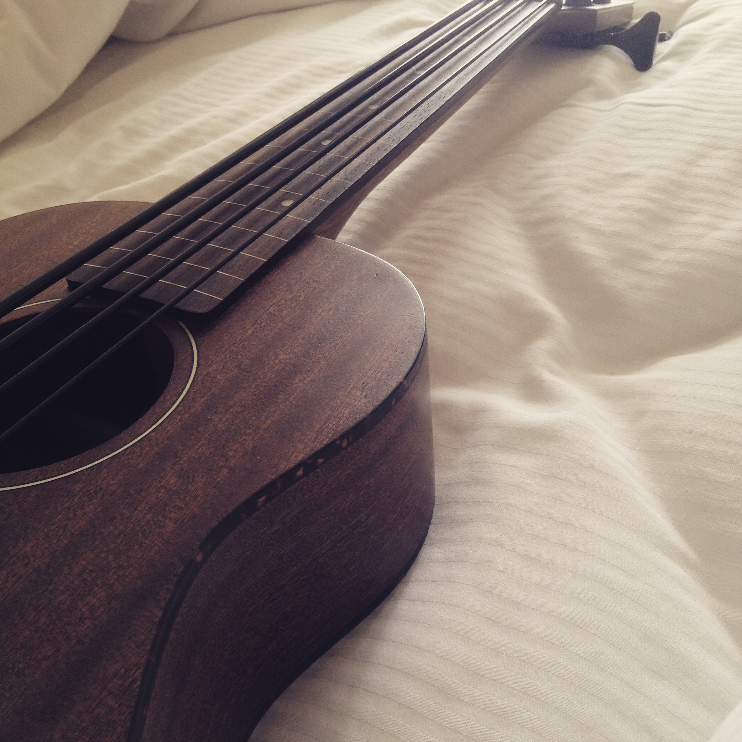 morning with the bass